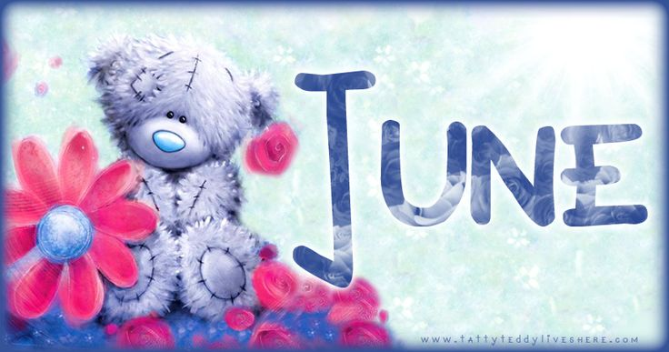 JUNE ♡ Tatty Teddy  tjn                                                                                                                                                                                 More