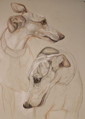 Donalee Peden Wesley Drawings   Studies