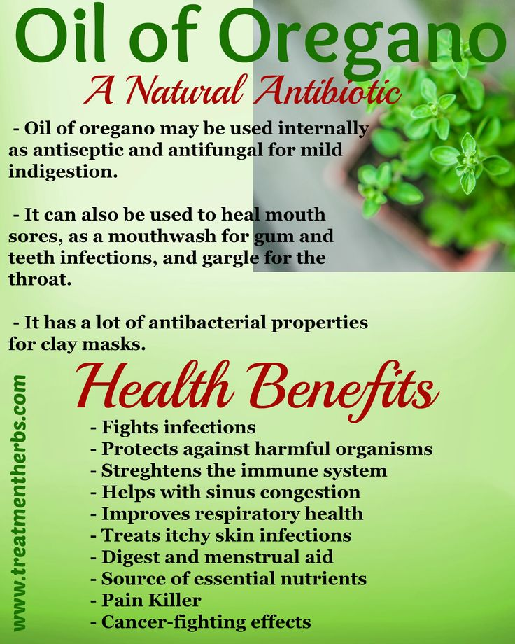Oil of oregano benefits fight infection natural antibiotic