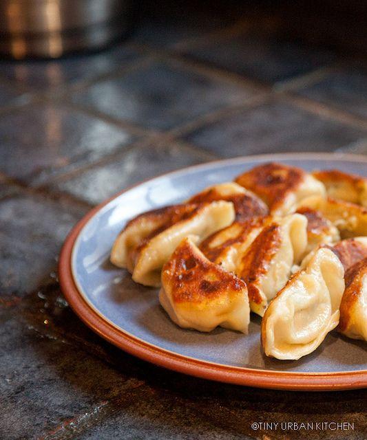 Homemade Chinese Dumplings ( Jiao Zi , Gyōza )