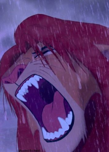 Never really before taken any notice in how beautiful the lion king actually is. The animation in it is absolutely brilliant.