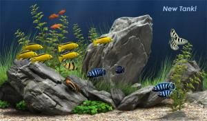 Download Dream Aquarium Screensaver For Windows