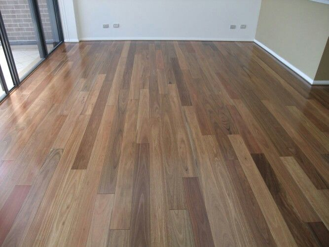 Spotted gum flooring (picture not our house)