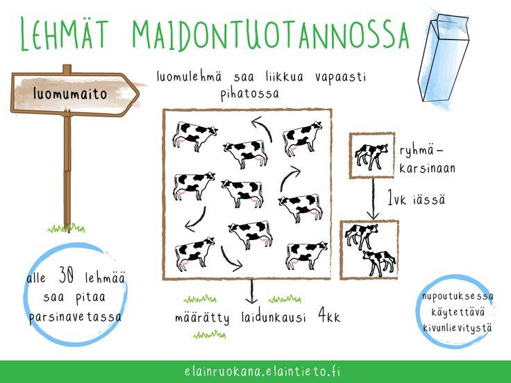 Luonnonmukainen eläintuotanto on EU:n luomusäädösten mukaista Elintarviketurvallisuusviraston valvontajärjestelmään kuuluvaa eläintuotantoa.
