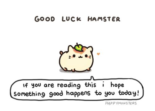 Good luck hamster! COME LOOK AT MY OTHER BOARDS I HAVE CRAFTING, KAWAII, MAKEUP, COOKING, DOLL, COOL/LOL, ANIMALS+ MANY MORE AWSOME THINGS!!! follow today