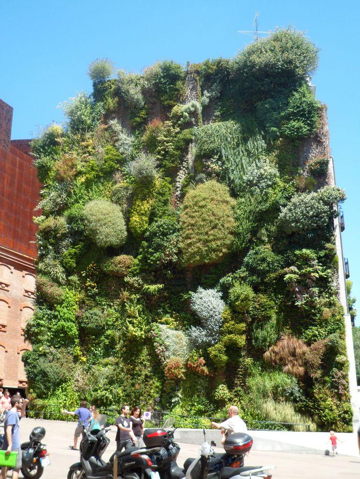 Jardín vertical. CaixaForum Madrid