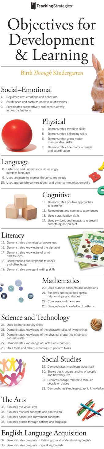 "Teaching Strategies mini-poster ""Objectives for Development & Learning"""