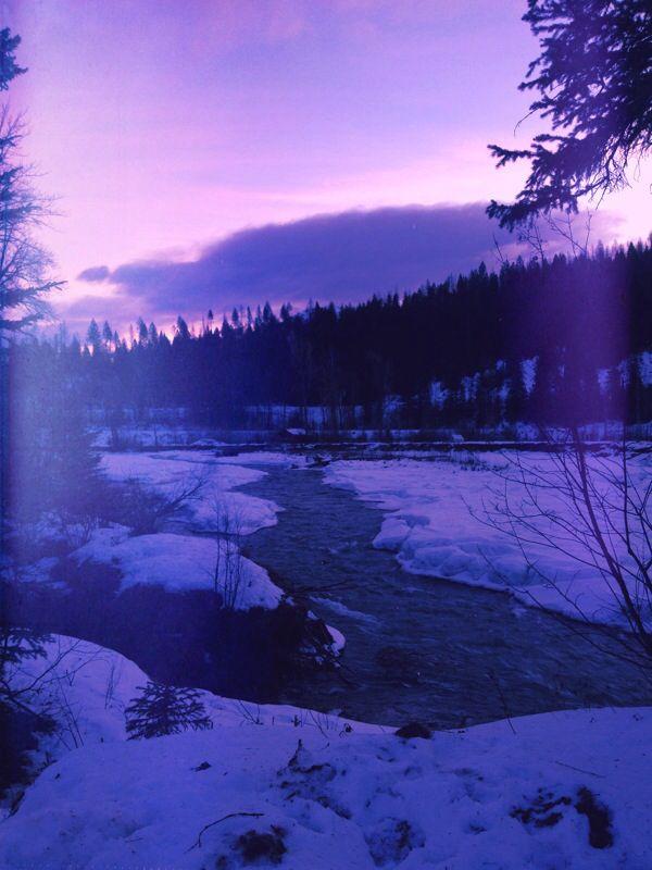 A purple Elk River. Brrrr Fernie BC