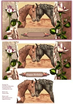 Beautifuly Horse Duo on Craftsuprint designed by Christine Maunder - A beautiful photo of two horses showing friendship with a pretty frame of roses and lace. A card suitable for many occasions with a blank sentiment plate. - Now available for download!