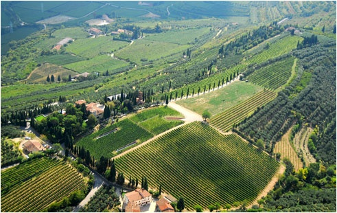 Panoramica #Valpolicella   http://www.agriturismo.st/it/italia/Strada-del-Valpolicella/