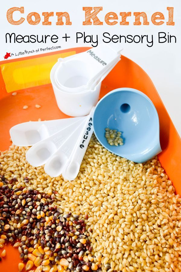 Corn Kernel Measure and Play Sensory Bin (measuring, pouring, counting, graphing, and weighing, fall kids activity, preschool, kindergarten).