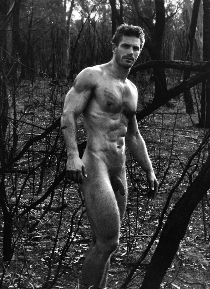 from Titus gay photographer hairy men models