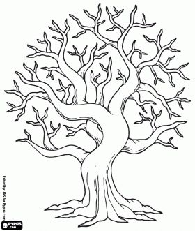 fall tree coloring page …