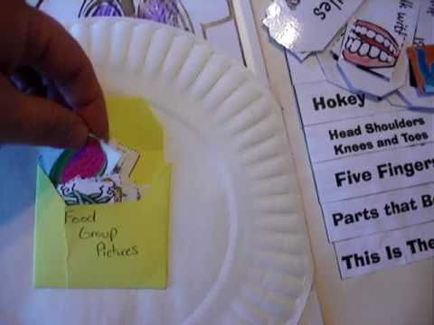 Anatomy Lapbook - YouTube