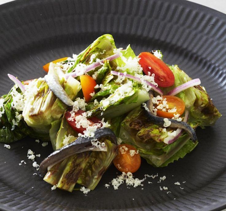 Best 25 Regrow Romaine Lettuce Ideas On Pinterest: Best 25+ Head Of Lettuce Ideas On Pinterest