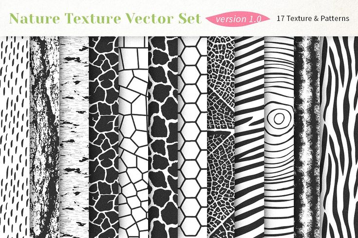 Nature Texture Vector Set. Nature Patterns