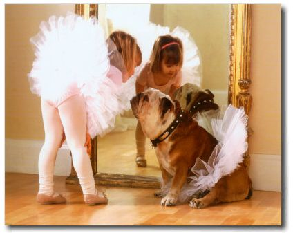 .: Little Girls, Ballet Dancers, Best Friends, Tutu, Dresses Up, Ballerinas, English Bulldogs, Animal, Kid