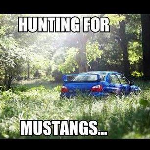 Subaru, Sti, Mustangs
