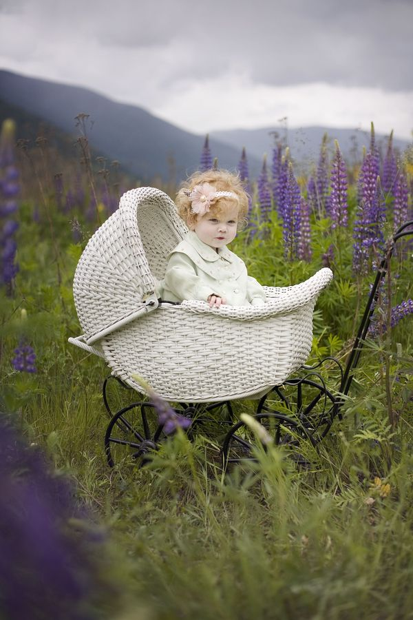Charming baby buggy