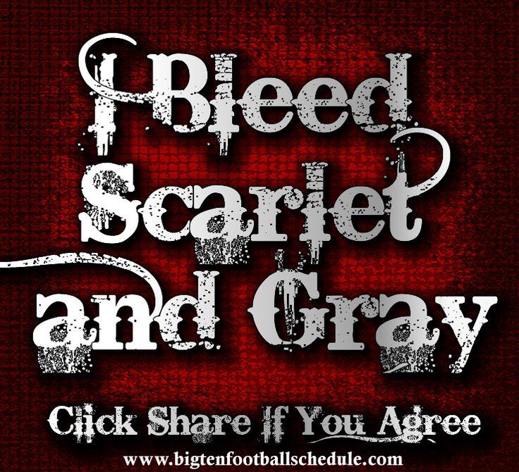Ohio State Buckeyes Football I Bleed Scartlet & Gray!!!  http://www.bigtenfootballschedule.com/ohio_state_football_schedule.html