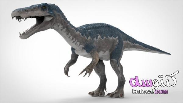 معلومات عن ديناصور باريونيكس بالصور معلومات عن الديناصورات وانواعه Animals Whale