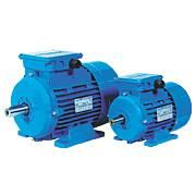 WY Series Aluminium Induction Motor is Three Phase Induction Motor with removable feet. Position of terminal box can be changed according to user's requirement. Efficiency indicator reaches IE1 standard.