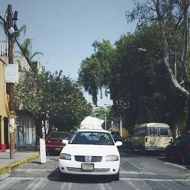 나는 멕시코의 도로를 좋아했나보다 ㅎㅎ 사진마다 뭐 이리 다 도로사진 🙊 그치만 건물도 그렇고.. 나라의 색감이 알록달록해서 너무 이뻐쏭 ♥ ⇢ #mexico #멕시코 #여행 #travel #instatravel #travelgram #travelpic #travelphoto  #developermong by 19.00.12.08. travel #travelpic #멕시코 #여행 #travelgram #developermong #travelphoto #instatravel #mexico