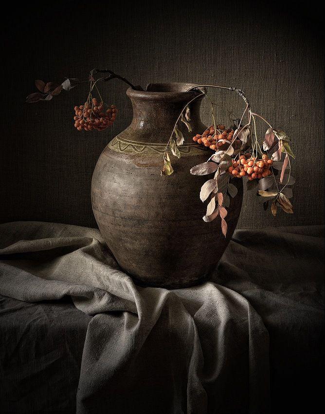 Фотография рябина 2. Автор Gennadiy Shin.