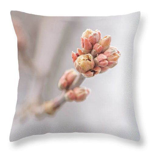 "The Eve Of Spring Throw Pillow by Jane Star.  Our throw pillows are made from 100% spun polyester poplin fabric and add a stylish statement to any room.  Pillows are available in sizes from 14"" x 14"" up to 26"" x 26"".  Each pillow is printed on both sides (same image) and includes a concealed zipper and removable insert (if selected) for easy cleaning."