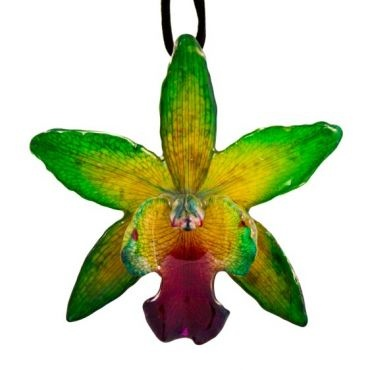 Cattleya, pronounced cat-lay'-a is also know as The Queen of Orchids.  This stunning orchid was picked at it's perfection and has been preserved in resin for you to enjoy for a lifetime.    This preservation process can take up to a week per flower with several coats of resin applied in stages to make it as durable as possible.    The orchid size is about 3.25 inches high and 3.25 inches wide .  (Orchid size will vary as each flower is one of a kind)   $45
