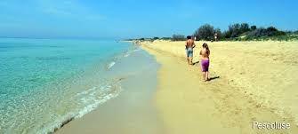 spiaggia di pescoluse www.specolizzi.it