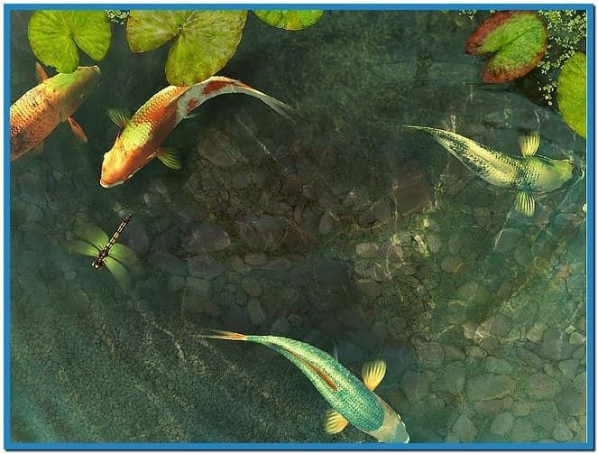 17 best ideas about fish screensaver on pinterest water for Koi pond screensaver