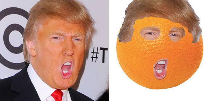 13 choses qui ressemblent étrangement à Donald Trump : une orange à moumoute