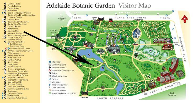17 Best Images About Botanic Garden On Pinterest Gardens