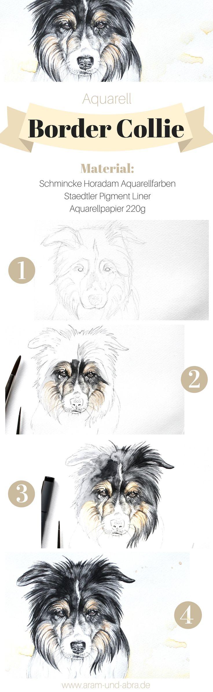 Zeichnung Aquarell von Hund (Border Collie) Bely. Tierportraits und Illustrationen von Aram und Abra.