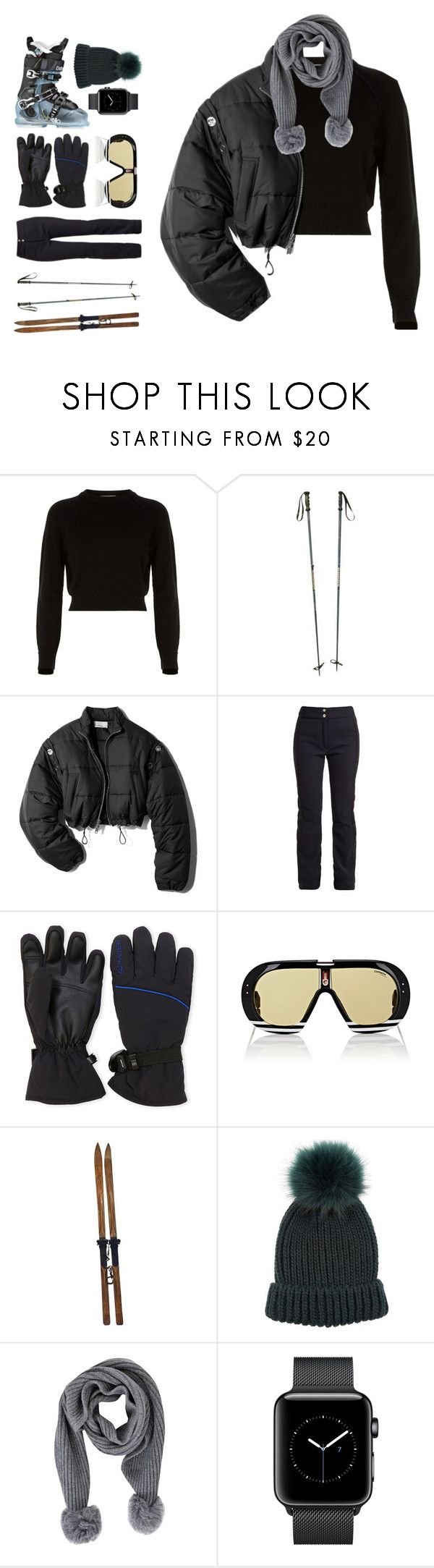 """Teresa"" by brie-the-pixie ❤ liked on Polyvore featuring Helmut Lang, 3.1 Phillip Lim, Fusalp, Spyder, Carrera, L.L.Bean and Acne Studios"