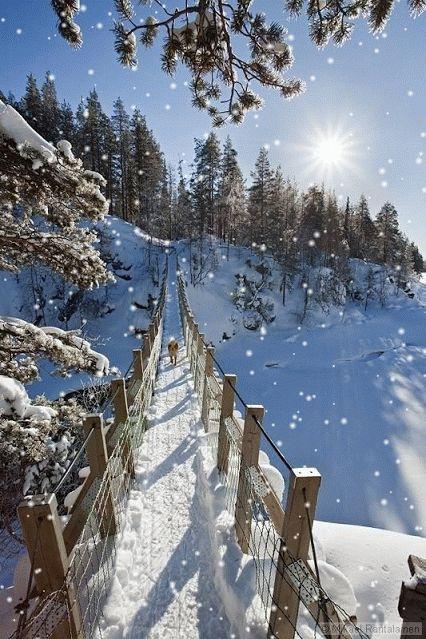 倫☜♥☞倫 First snow - CLICK to see it come to life.