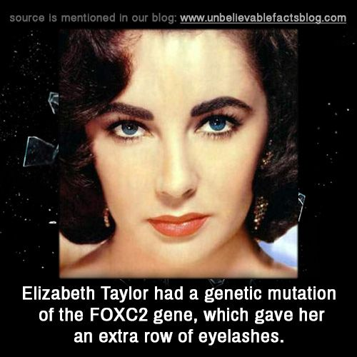 Elizabeth Taylor had a genetic mutation of the FOXC2 gene, which gave her an extra row of eyelashes.
