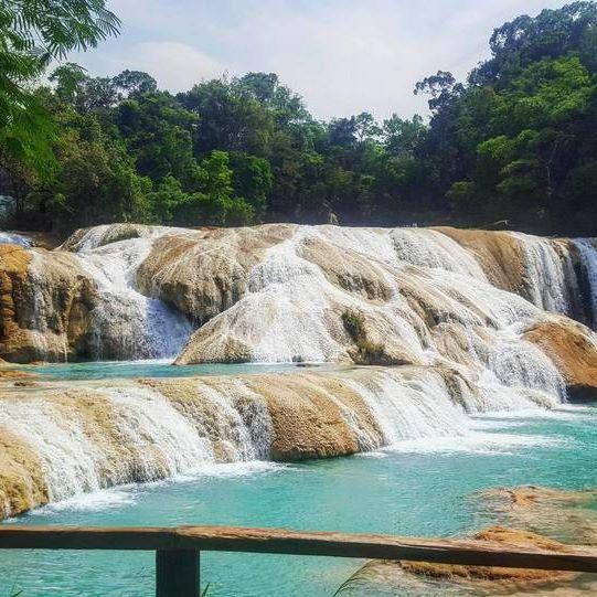 Cascadas de Agua Azul, Chiapas, Mexico. A must in this State! Credits: @marianagzam  .  Use #RTTraveller to send us your #travel pics, we will share the best ones! 📷😉 .  #viajar #viajes #amazing #travel #instatravel #instatravelling #aguaazul #cascada #waterfall #nature #naturaleza #chiapas #mexico #america #city #evening #instamoment #beautifuldestinations #dreamlife #bestvacations #explore #discover