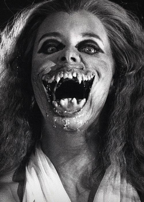 Fright Night. One if the best vampire movies ever!!!