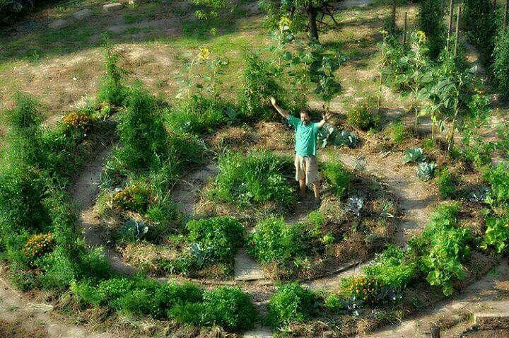 """""""Il più grosso cambiamento che possiamo realizzare è passare dal consumo alla produzione, anche in una piccola scala, nel nostro orto. Se lo facesse anche solo il 10% di noi, ce ne sarebbe per tutti. Da qui la futilità dei rivoluzionari che non hanno un orto, che dipendono totalmente dal sistema che attaccano, e che producono parole e pallottole, invece di cibo e abitazioni."""" Bill Mollison padre della permacultura"""