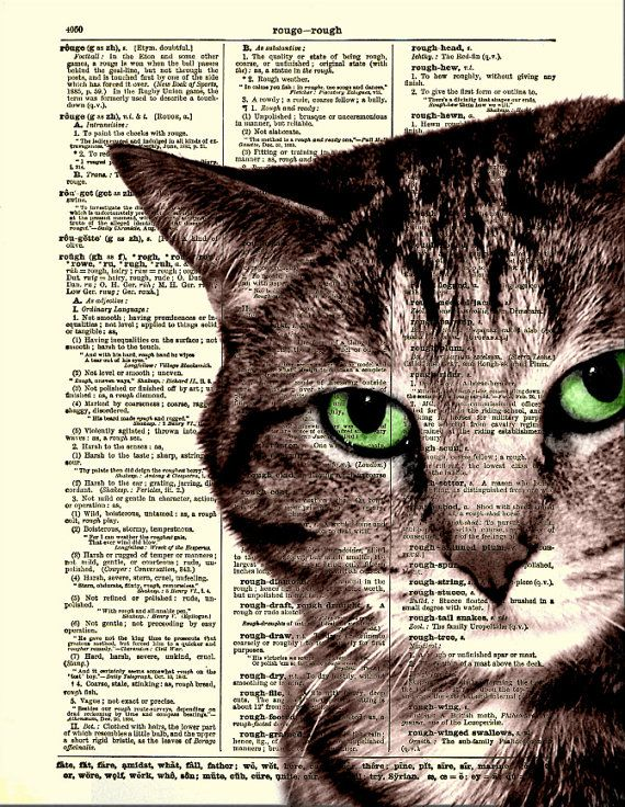dictionary art print cat print sly cat art door reimaginationprints 1000