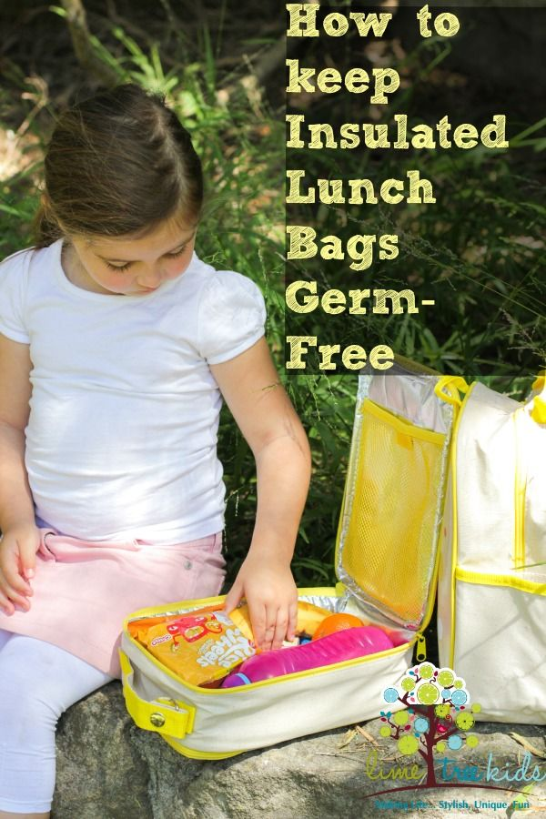 Insulated Lunch Bags: How to Keep them Clean and Germ-free  #limetreekids #play #kids #fun #limetreemummablog