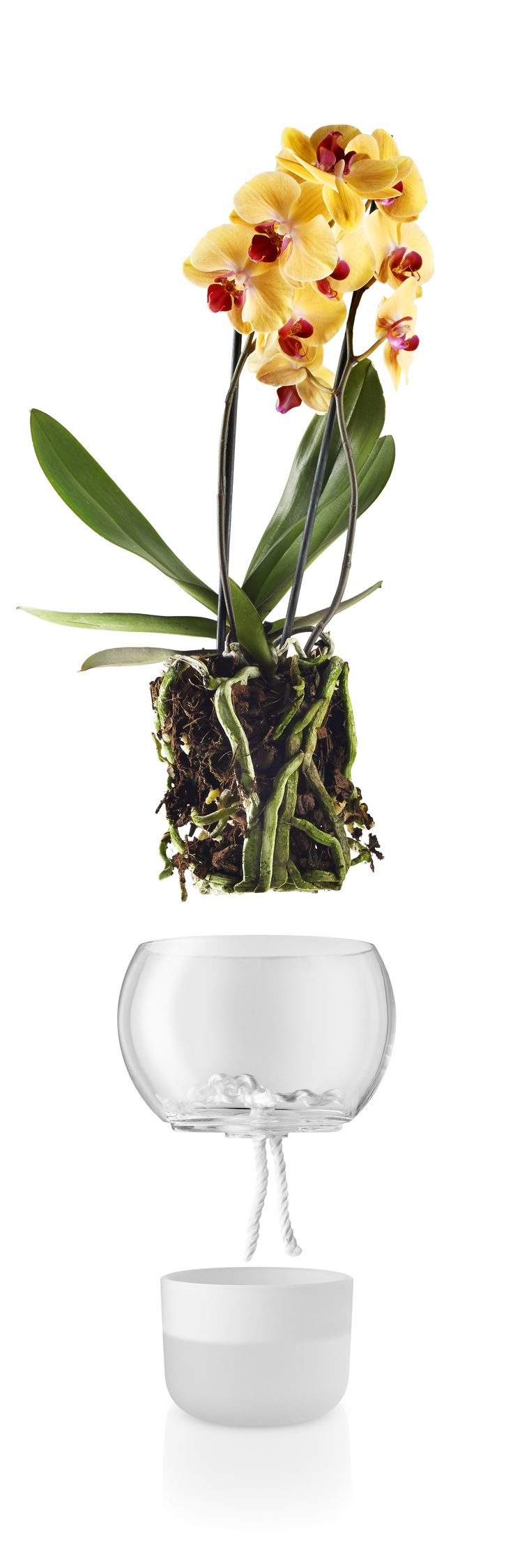 Selfwatering orchid pot 15 cm by Eva Solo