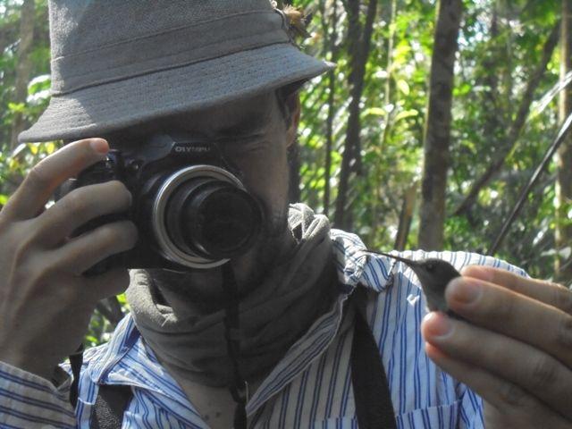 IAP, caracterización biológica. Fotografía de un colobrí.