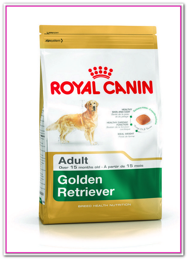 Best Cheap Dog Food For Golden Retrievers Dog Food Recipes