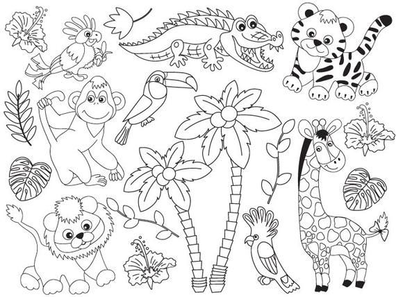 More Jungle Animals Clipart Can Be Found Here Http Etsy Me 2ojyb7e Item Black And White Jungle Animals Clip Animal Clipart Animals Animal Coloring Pages