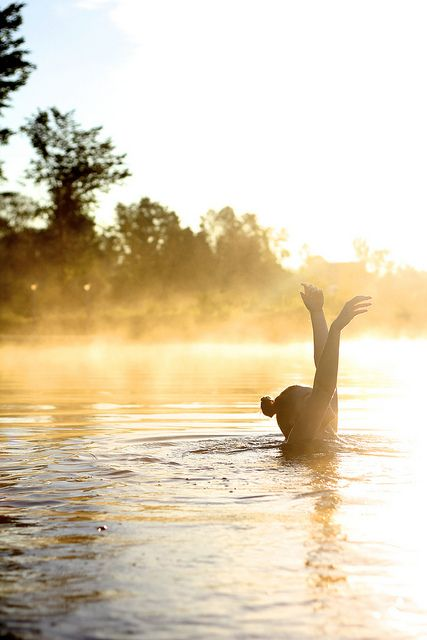 Lakeside summer: Morning Dip, Picture, Water Loving, Lakeside Summer, Morning Swim, Light, Photography, Summer Life