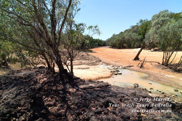 Alice River, Queensland, Australia