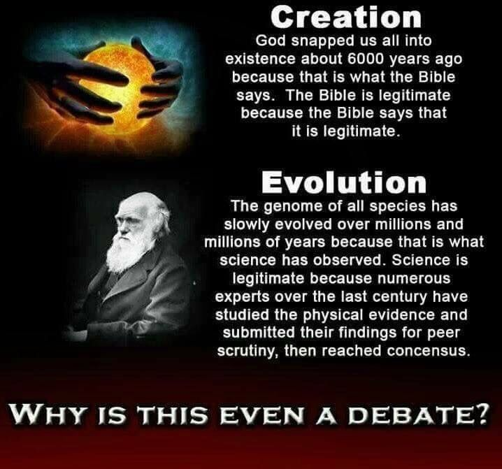Evolution bible quotes